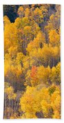 Colorado High Country Autumn Colors Beach Towel