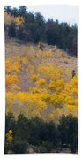 Colorado Mountain Aspen Autumn View Beach Towel