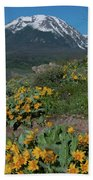 Colorado Spring Wildflower And Mountain Portrait Beach Towel by Cascade Colors