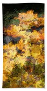Colored Maple Leaves Beach Towel