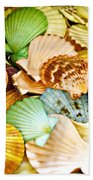 Colored Shells Beach Towel