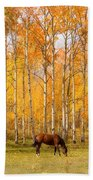 Colorful Autumn High Country Landscape Beach Sheet