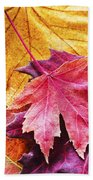 Colorful Autumn Leaves Closeup Beach Towel
