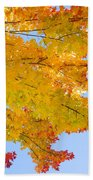 Colorful Autumn Reaching Out Beach Towel