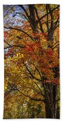 Colorful Autumn Tree In Southwest Michigan By Gun Lake Beach Towel