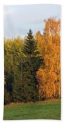 Colorful Autumn - Trees In Autumn Beach Towel