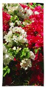 Colorful Bougainvilleas Beach Towel