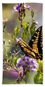 Colorful Butterfly Beach Towel