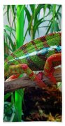 Colorful Chameleon Beach Towel
