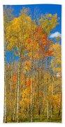 Colorful Colorado Autumn Landscape Beach Sheet