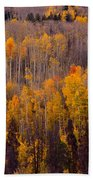 Colorful Colorado Autumn Landscape Vertical Image Beach Towel