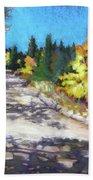 Colorful Colorado Beach Sheet