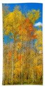 Colorful Colorado Fall Foliage Beach Sheet