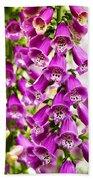 Colorful Foxglove Flowers Beach Towel