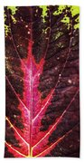 Colorful Leaf By Mother Nature Beach Towel