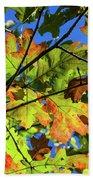 Colorful Leaves Beach Towel