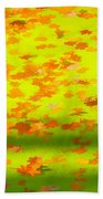 Colorful Leaves On Canal Beach Towel