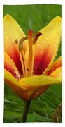 Colorful Lily Dew Drops Beach Towel