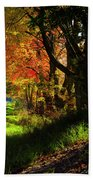 Colorful Maples Beach Towel