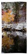 Colorful Pond Beach Towel