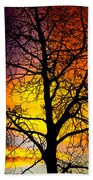 Colorful Silhouette Beach Towel