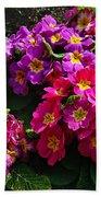 Colorful Spring Primrose By Kaye Menner Beach Towel