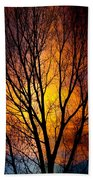 Colorful Tree Silhouettes Beach Towel