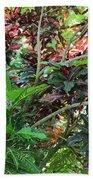 Colorful Tropical Plants Beach Towel