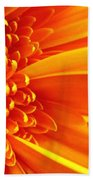Colors Galore Beach Towel