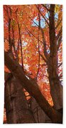 Colors Of Fall Beach Towel