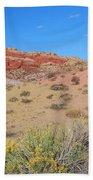 Colors Of The Utah Desert Beach Towel