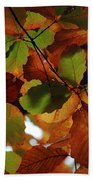 Colours Of Fall II Beach Towel