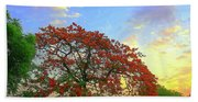 Colours Of Nature Beach Towel