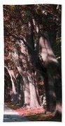 Colt State Park Bristol Rhode Island Beach Towel