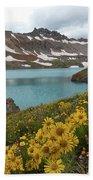 Columbine Lake And Alpine Sunflower Landscape Beach Sheet