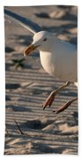 Coming In For A Landing - Jersey Shore Beach Towel