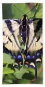 Common Yellow Swallowtail Beach Towel