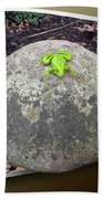 Concrete Toad Stool Beach Towel