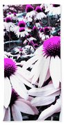 Cone Flower Delight Beach Towel by Kevyn Bashore