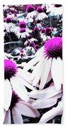 Cone Flower Delight Beach Sheet