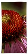 Coneflower Bee Beach Towel