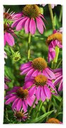 Coneflower Garden Beach Towel