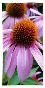 Three Coneflowers  Beach Towel