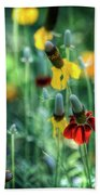 Coneflowers Beach Towel