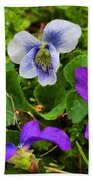 Confederate And Purple-blue Violets Beach Towel