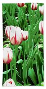 Confederation Tulips Beach Towel
