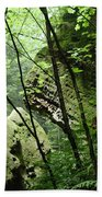 Conkle's Hollow Stone Arch Beach Towel