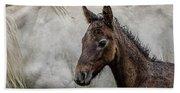 Connemara Foal Beach Sheet