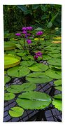 Conservatory Waterlilies Beach Towel
