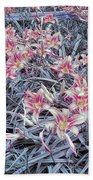 Cool Sunset Field Of Tiger Lillies Beach Towel